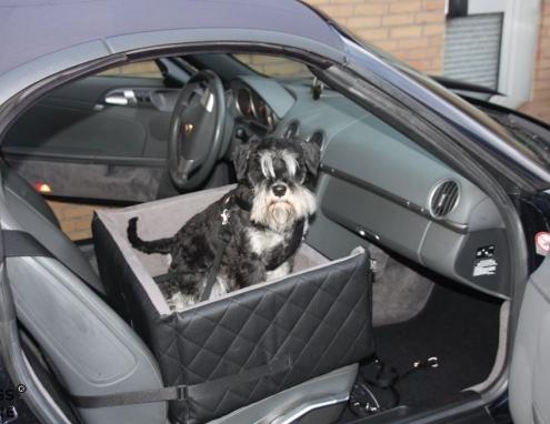 hunde autositze hundeautositz autositz f r hunde. Black Bedroom Furniture Sets. Home Design Ideas