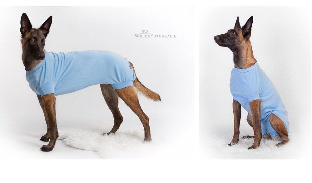 Hunde OP-Body, Hunde Post-OP-Schutz, Hunde-OP-Kleidung, Hunde-Body ...