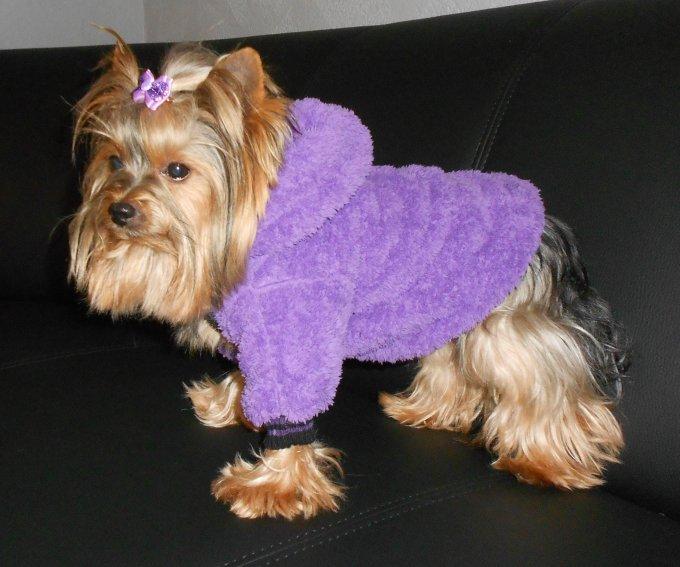 hunde pulli hunde pullover hundepullover hunde jacke hundemode hunde bekleidung hunde jogger. Black Bedroom Furniture Sets. Home Design Ideas
